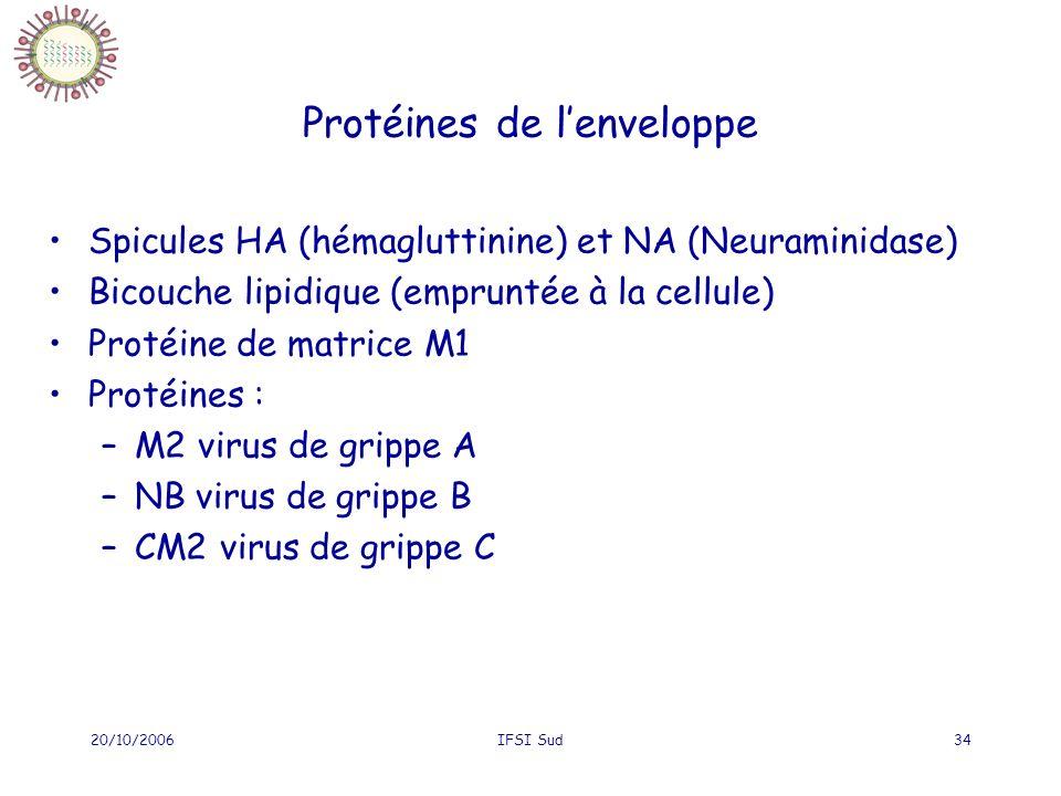 20/10/2006IFSI Sud34 Protéines de lenveloppe Spicules HA (hémagluttinine) et NA (Neuraminidase) Bicouche lipidique (empruntée à la cellule) Protéine de matrice M1 Protéines : –M2 virus de grippe A –NB virus de grippe B –CM2 virus de grippe C