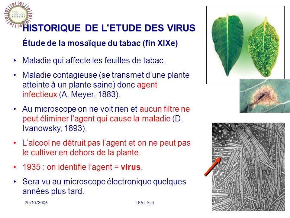 20/10/2006IFSI Sud75 Grippe VACCINATION ANTIGRIPPALE