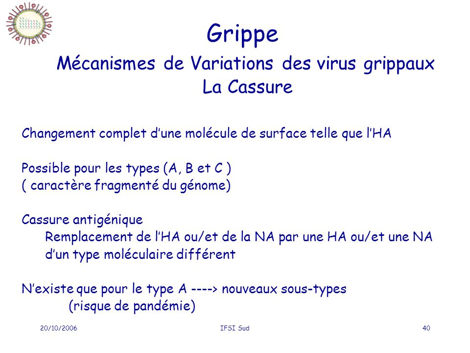 20/10/2006IFSI Sud40 Grippe Mécanismes de Variations des virus grippaux La Cassure Changement complet dune molécule de surface telle que lHA Possible pour les types (A, B et C ) ( caractère fragmenté du génome) Cassure antigénique Remplacement de lHA ou/et de la NA par une HA ou/et une NA dun type moléculaire différent Nexiste que pour le type A ----> nouveaux sous-types (risque de pandémie)