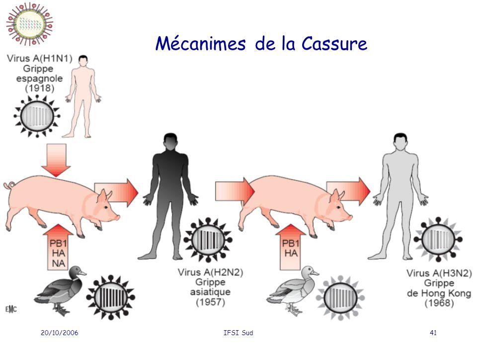 20/10/2006IFSI Sud41 Mécanimes de la Cassure