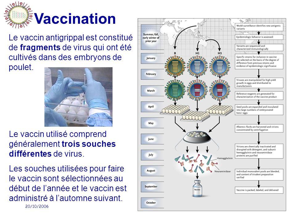 20/10/2006IFSI Sud76 Vaccination Le vaccin antigrippal est constitué de fragments de virus qui ont été cultivés dans des embryons de poulet. Le vaccin