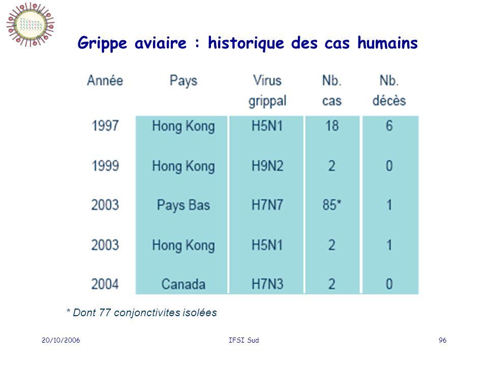 20/10/2006IFSI Sud96 Grippe aviaire : historique des cas humains * Dont 77 conjonctivites isolées