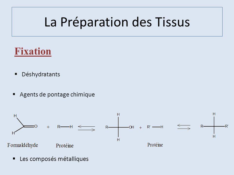 La Préparation des Tissus Fixation Déshydratants Agents de pontage chimique Les composés métalliques