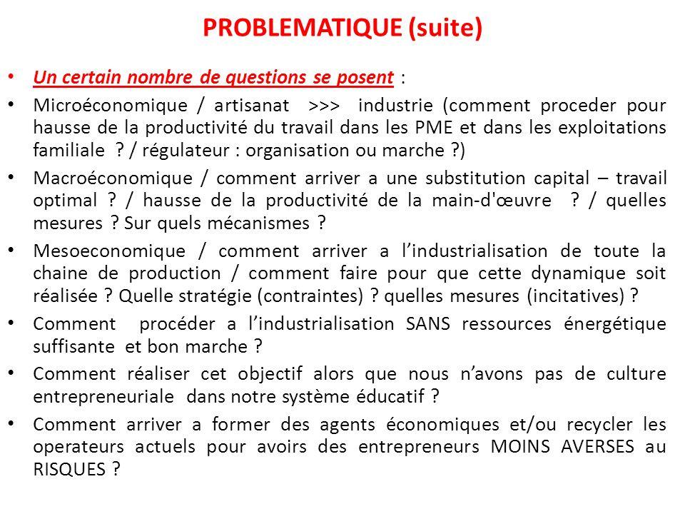 Un certain nombre de questions se posent : Microéconomique / artisanat >>> industrie (comment proceder pour hausse de la productivité du travail dans les PME et dans les exploitations familiale .