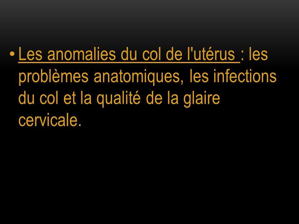 Les anomalies du col de l'utérus : les problèmes anatomiques, les infections du col et la qualité de la glaire cervicale.