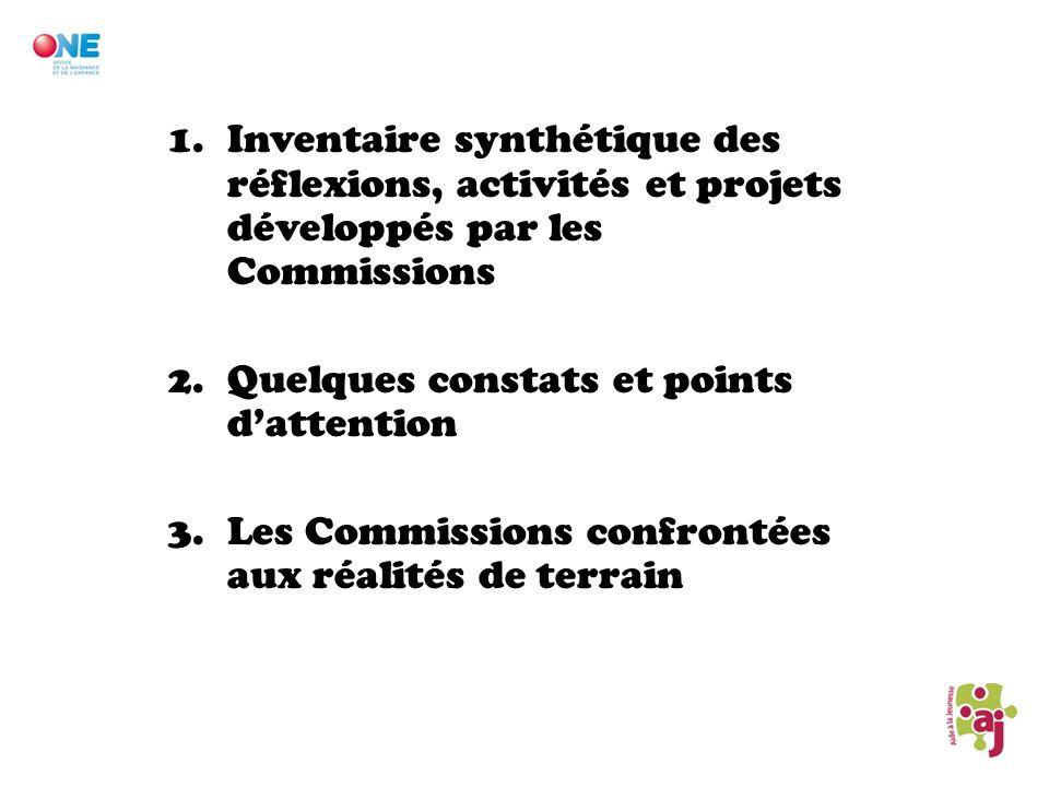 1.Inventaire synthétique des réflexions, activités et projets développés par les Commissions 2.Quelques constats et points dattention 3.Les Commission