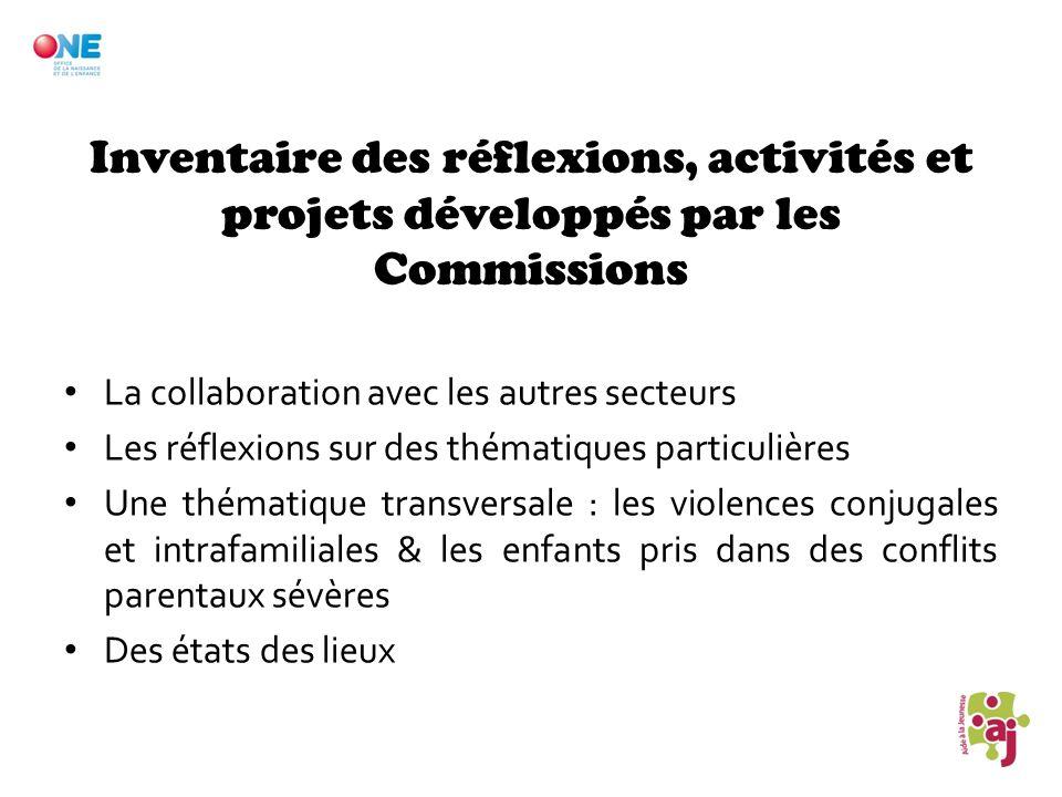 Inventaire des réflexions, activités et projets développés par les Commissions La collaboration avec les autres secteurs Les réflexions sur des thémat