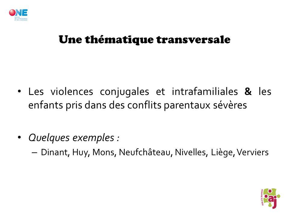Une thématique transversale Les violences conjugales et intrafamiliales & les enfants pris dans des conflits parentaux sévères Quelques exemples : – D