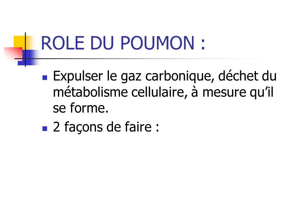 ROLE DU POUMON : HYPERVENTILATION : provoque une élimination accrue de CO2 HYPOCAPNIE UNE DIMINUTION des ions H+ augmentation du pH DONC Alcalose respiratoire