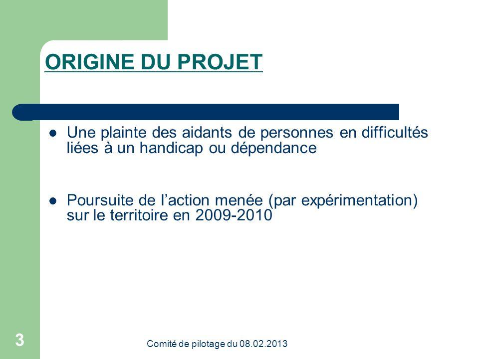 Merci de votre attention Comité de pilotage du 08.02.2013