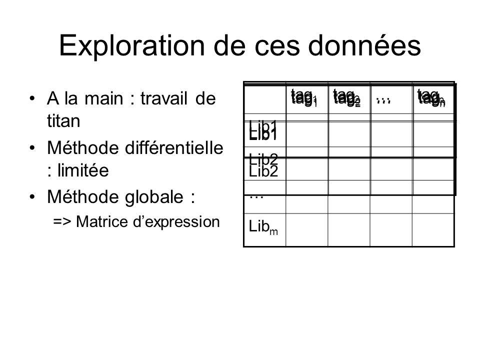 Exploration de ces données A la main : travail de titan Méthode différentielle : limitée Méthode globale : => Matrice dexpression tag 1 tag 2 …tag n Lib1 tag 1 tag 2 …tag n Lib1 Lib2 tag 1 tag 2 …tag n Lib1 Lib2 … Lib m