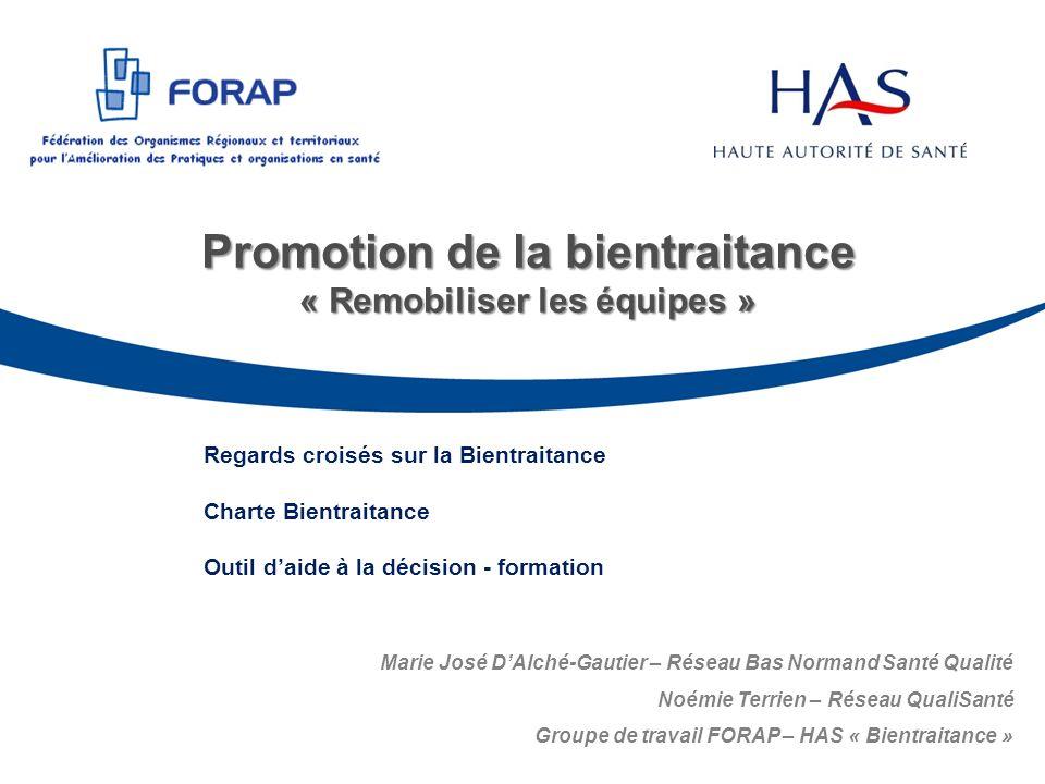 Promotion de la bientraitance « Remobiliser les équipes » Regards croisés sur la Bientraitance Charte Bientraitance Outil daide à la décision - format
