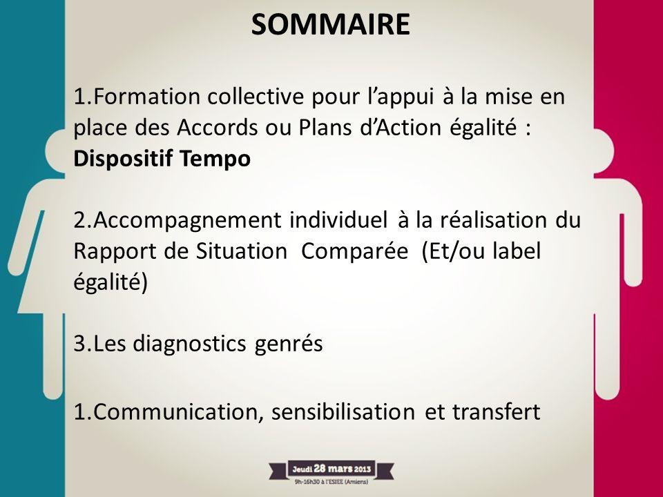 SOMMAIRE 1.Formation collective pour lappui à la mise en place des Accords ou Plans dAction égalité : Dispositif Tempo 2.Accompagnement individuel à l