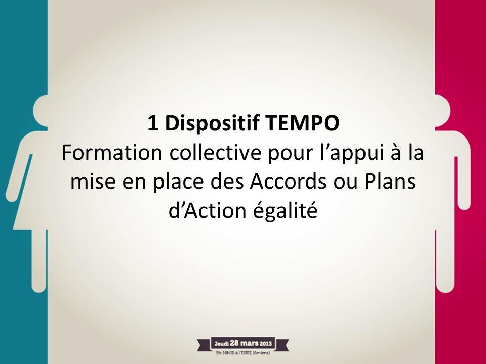 1 Dispositif TEMPO Formation collective pour lappui à la mise en place des Accords ou Plans dAction égalité