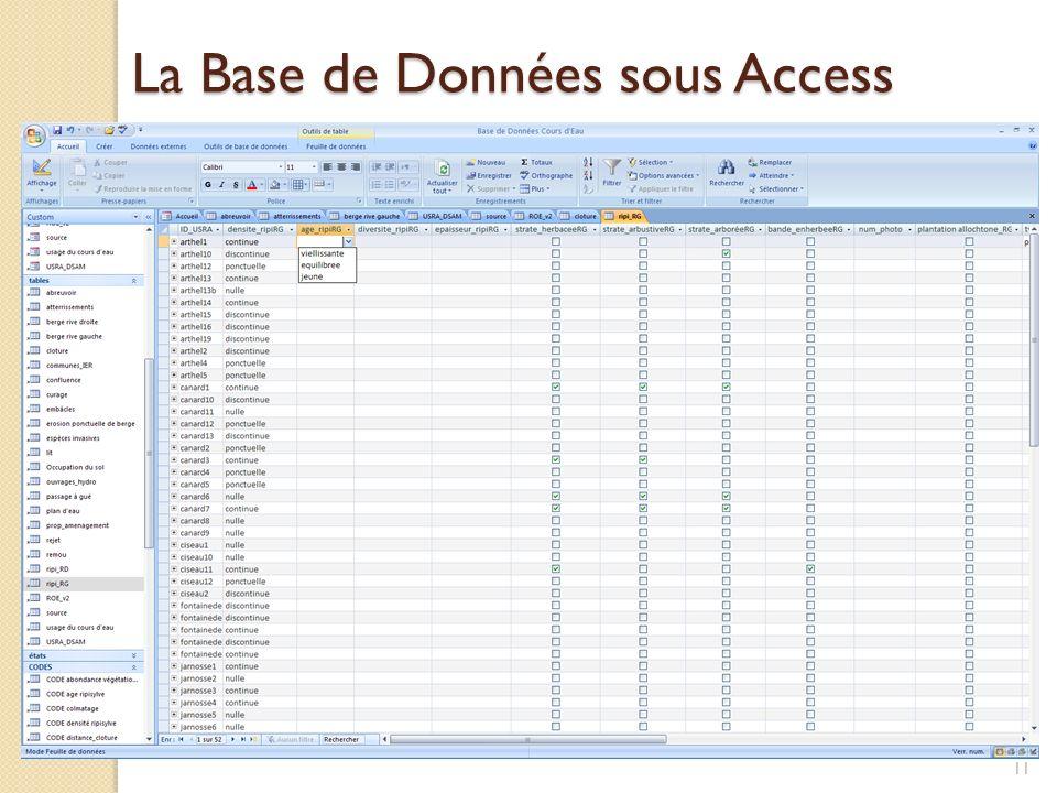 La Base de Données sous Access 11
