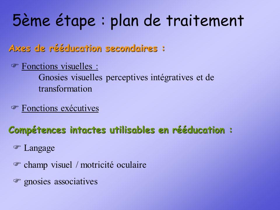 5ème étape : plan de traitement Fonctions visuelles : Gnosies visuelles perceptives intégratives et de transformation Fonctions exécutives Axes de réé