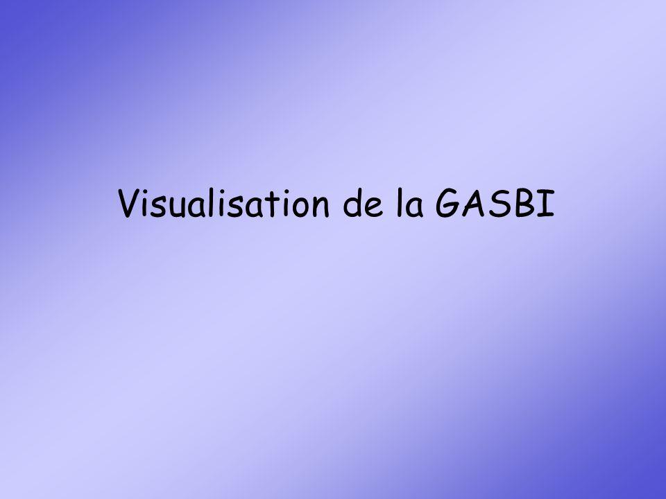 GASBI GAS Bi GASBI Grille dAide à la Synthèse des Bilans Caroline CHESNEL, Gwenaëlle LEFEVERE, ergothérapeutes