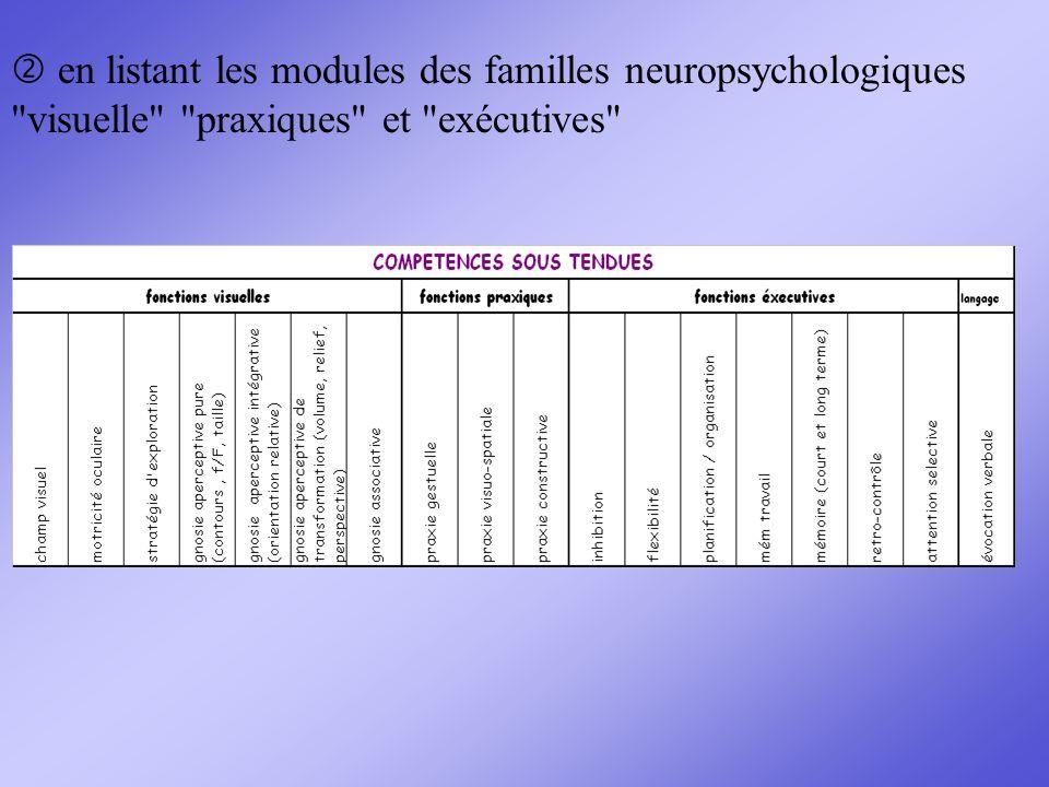 en listant les modules des familles neuropsychologiques