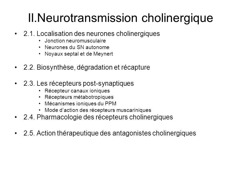 II.Neurotransmission cholinergique 2.1. Localisation des neurones cholinergiques Jonction neuromusculaire Neurones du SN autonome Noyaux septal et de