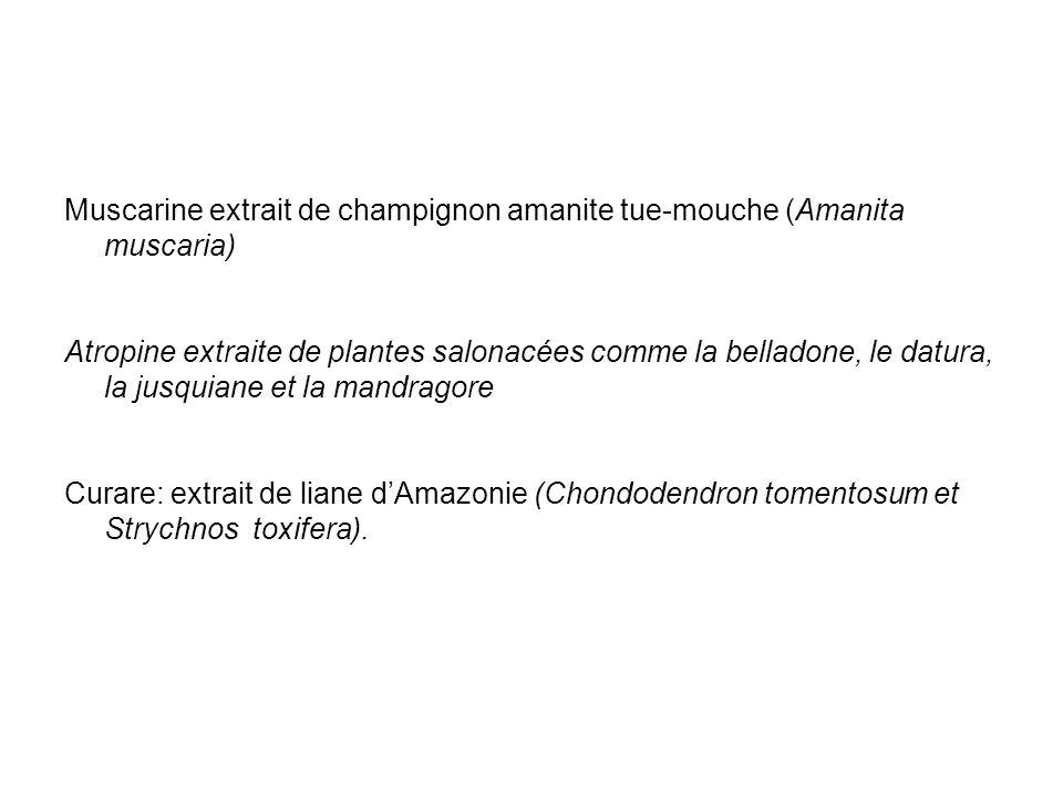 Muscarine extrait de champignon amanite tue-mouche (Amanita muscaria) Atropine extraite de plantes salonacées comme la belladone, le datura, la jusqui