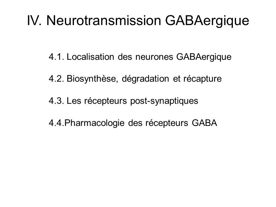4.1. Localisation des neurones GABAergique 4.2. Biosynthèse, dégradation et récapture 4.3. Les récepteurs post-synaptiques 4.4.Pharmacologie des récep