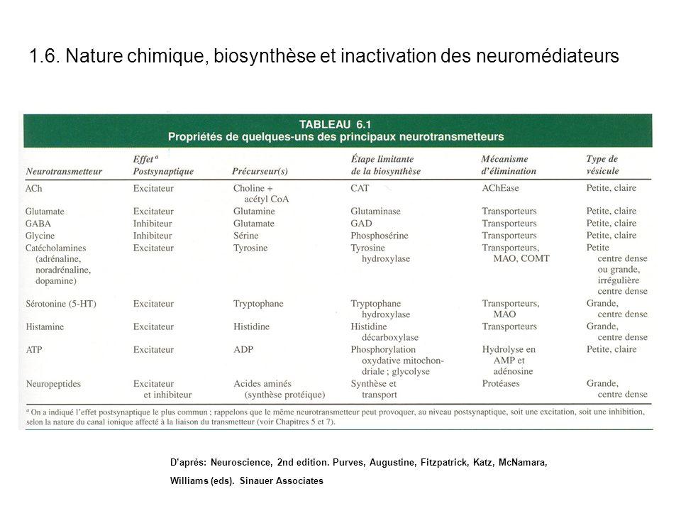 Daprès: Neuroscience, 2nd edition. Purves, Augustine, Fitzpatrick, Katz, McNamara, Williams (eds). Sinauer Associates 1.6. Nature chimique, biosynthès