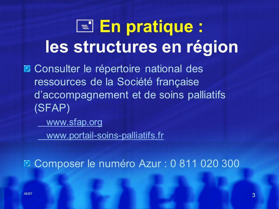 AE/07 3 En pratique : les structures en région Consulter le répertoire national des ressources de la Société française daccompagnement et de soins pal