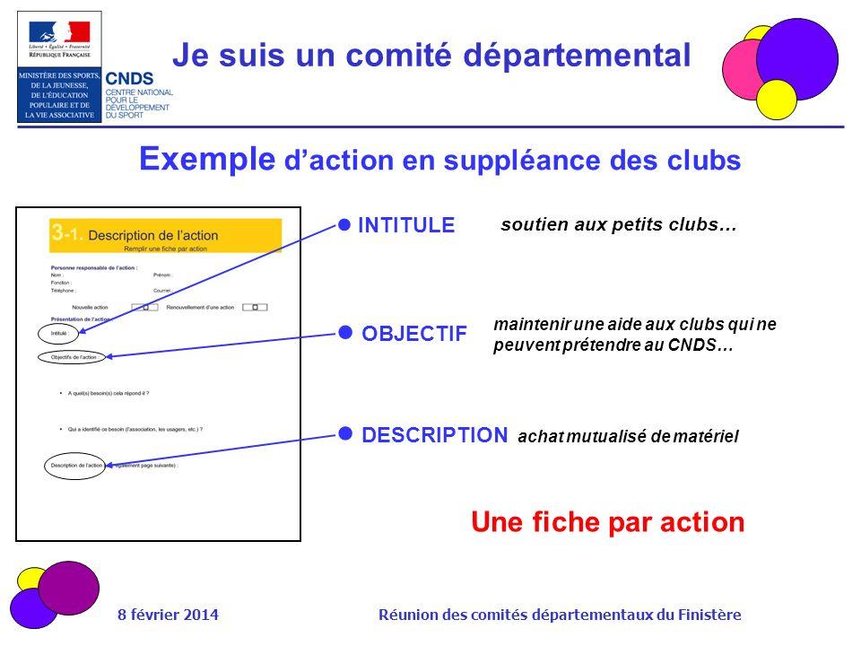 8 février 2014 Réunion des comités départementaux du Finistère Exemple daction en suppléance des clubs INTITULE Une fiche par action OBJECTIF DESCRIPT