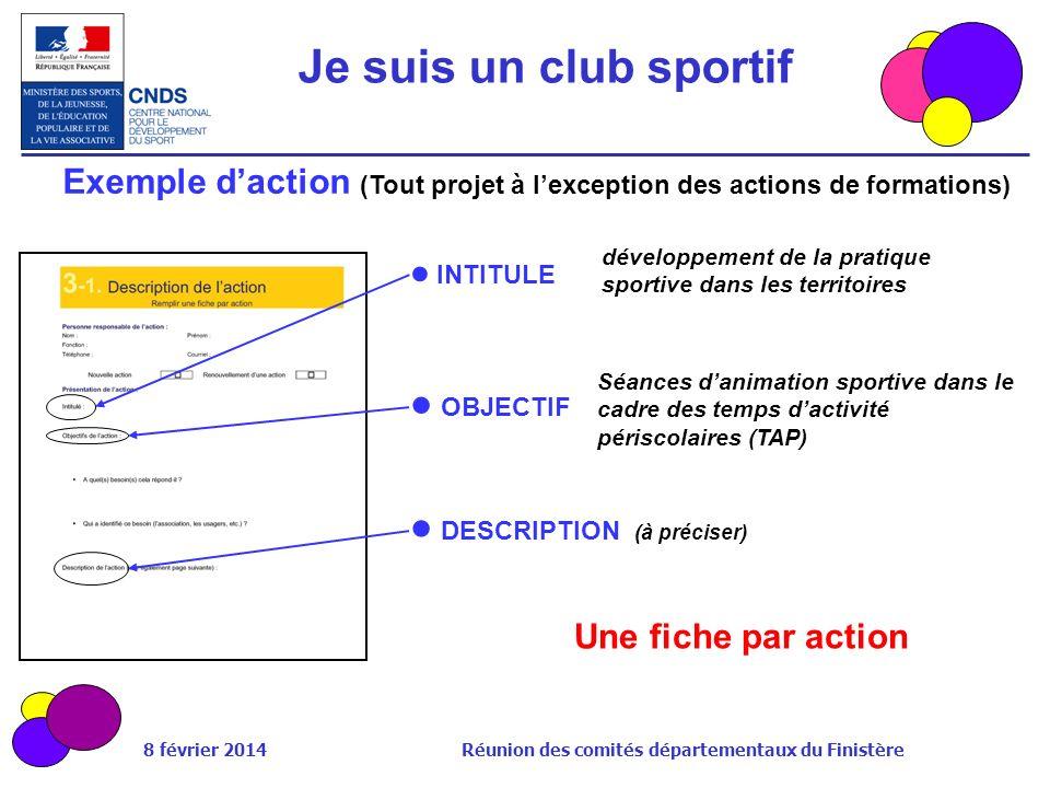 8 février 2014 Réunion des comités départementaux du Finistère Exemple daction (Tout projet à lexception des actions de formations) INTITULE Une fiche