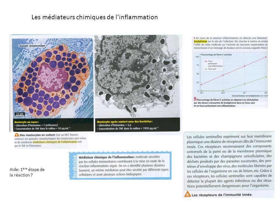 Les médiateurs chimiques de linflammation Aide: 1 ère étape de la réaction ?
