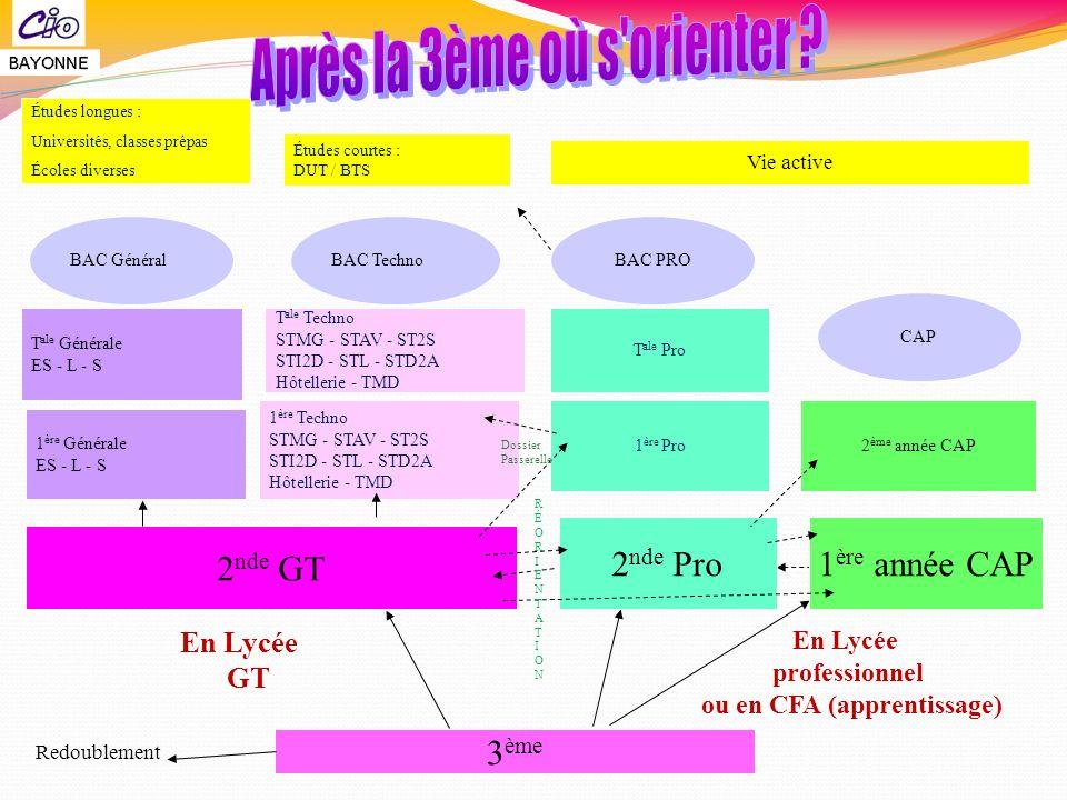 3 ème En Lycée GT En Lycée professionnel ou en CFA (apprentissage) Redoublement 2 nde GT 2 ème année CAP 1 ère Techno STMG - STAV - ST2S STI2D - STL -