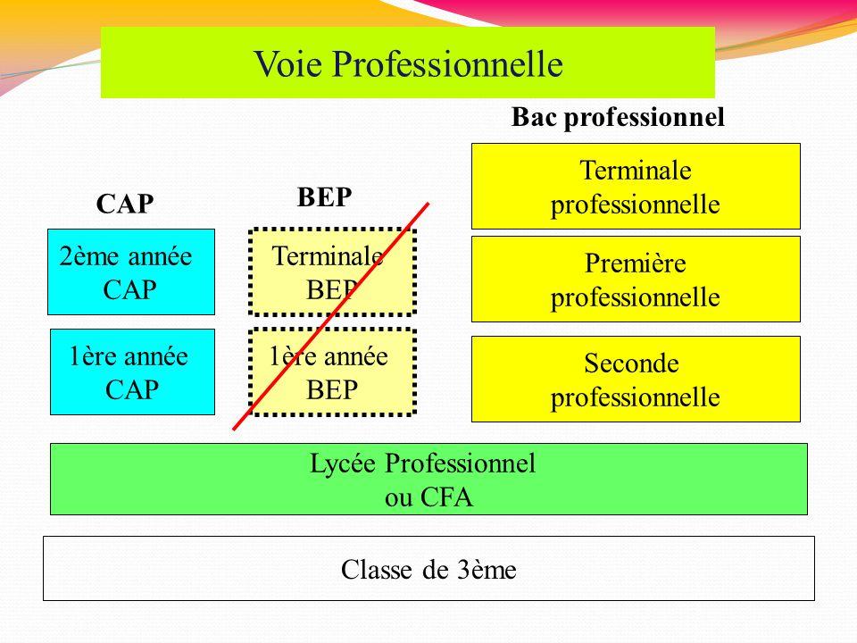 Classe de 3ème Lycée Professionnel ou CFA Seconde professionnelle 1ère année CAP 1ère année BEP Première professionnelle 2ème année CAP Terminale BEP