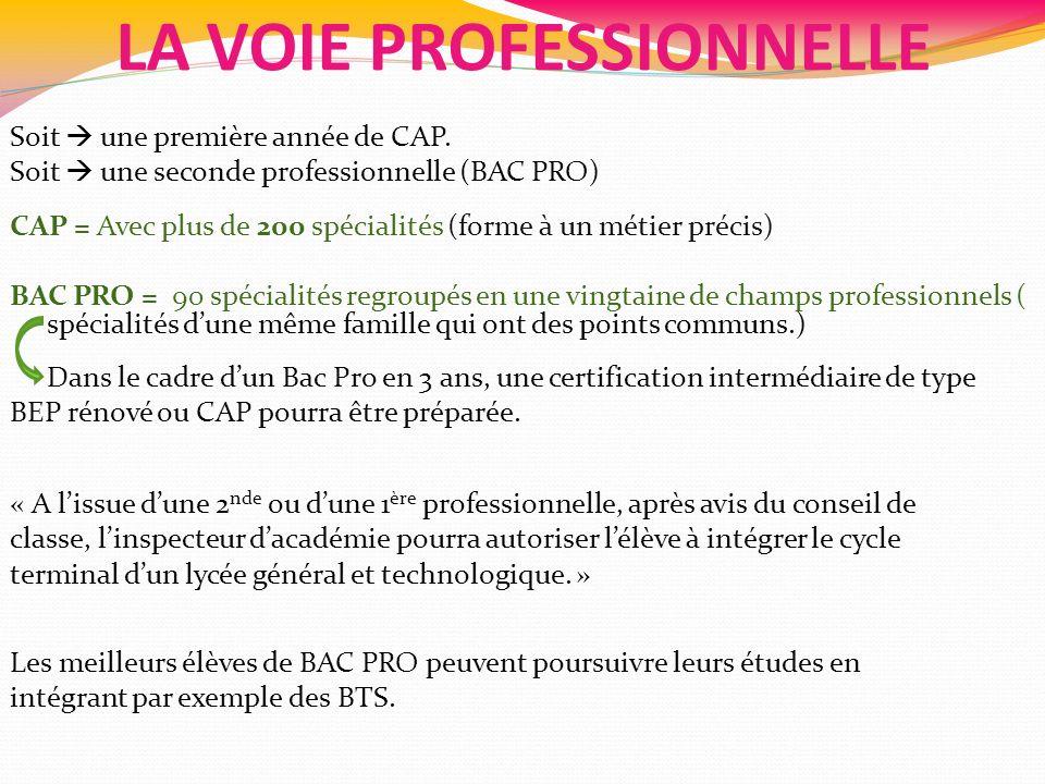 LA VOIE PROFESSIONNELLE Soit une première année de CAP. Soit une seconde professionnelle (BAC PRO) CAP = Avec plus de 200 spécialités (forme à un méti
