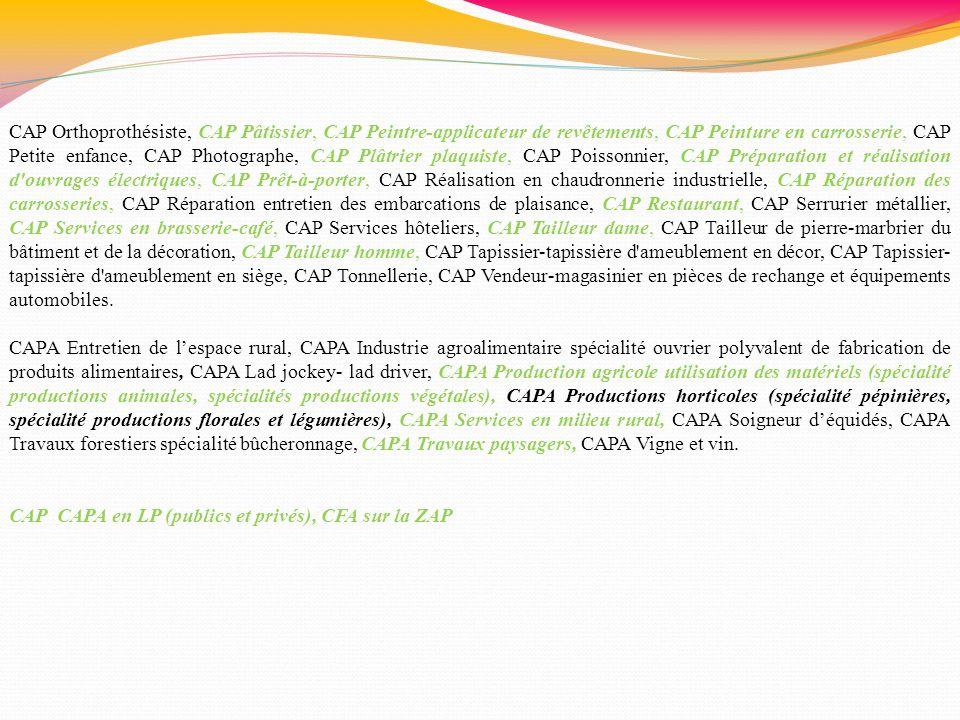 CAP Orthoprothésiste, CAP Pâtissier, CAP Peintre-applicateur de revêtements, CAP Peinture en carrosserie, CAP Petite enfance, CAP Photographe, CAP Plâ