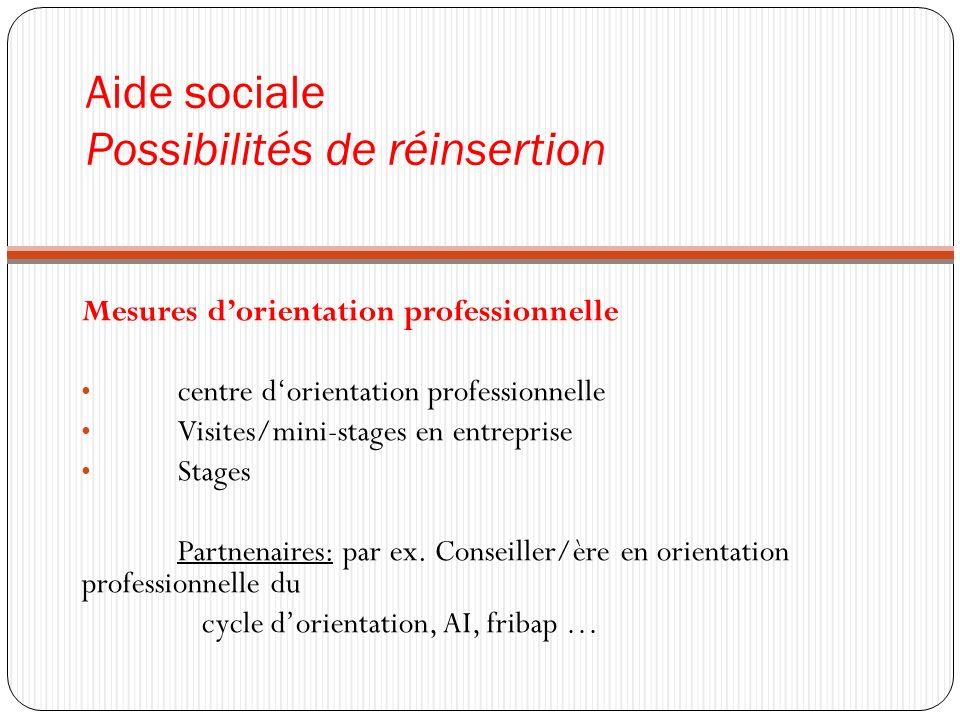 Aide sociale Possibilités de réinsertion Mesures dorientation professionnelle centre dorientation professionnelle Visites/mini-stages en entreprise Stages Partnenaires: par ex.