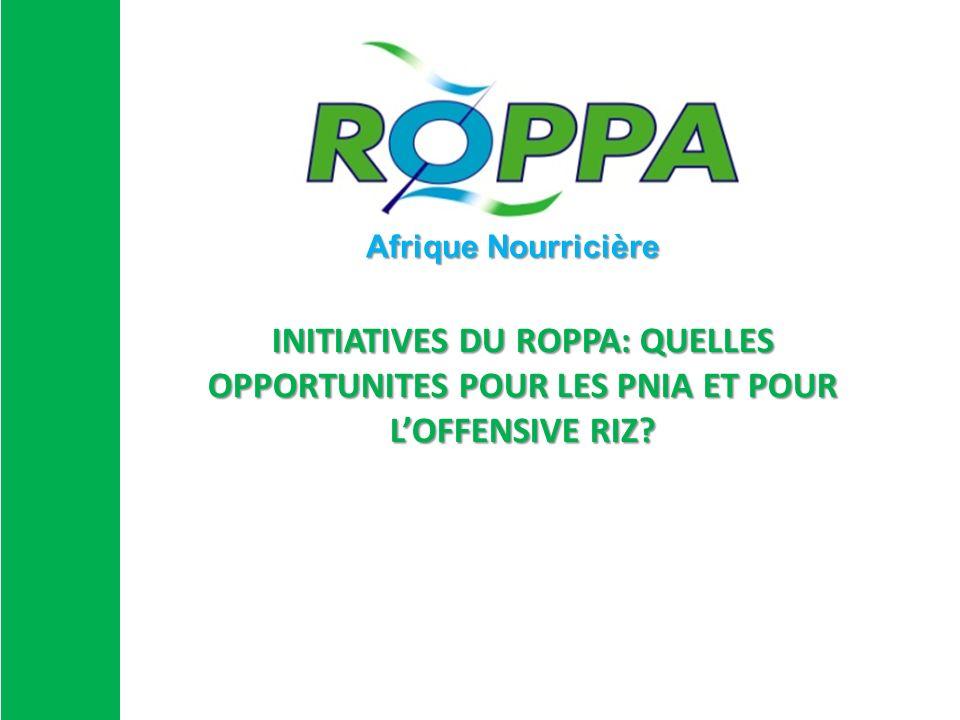 INITIATIVES DU ROPPA: QUELLES OPPORTUNITES POUR LES PNIA ET POUR LOFFENSIVE RIZ? Afrique Nourricière