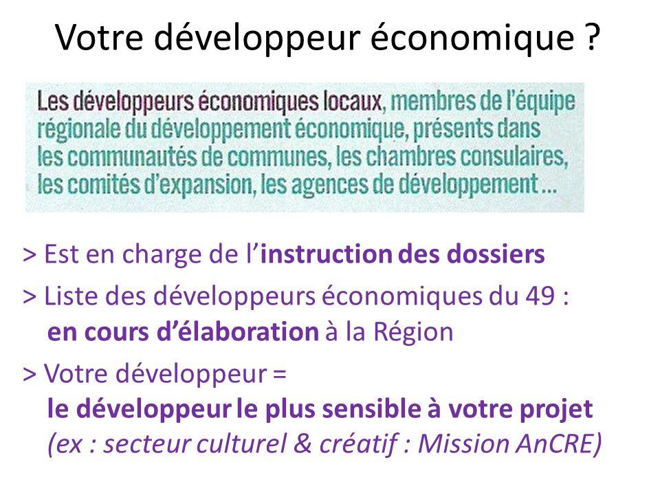 Votre développeur économique ? > Est en charge de linstruction des dossiers > Liste des développeurs économiques du 49 : en cours délaboration à la Ré