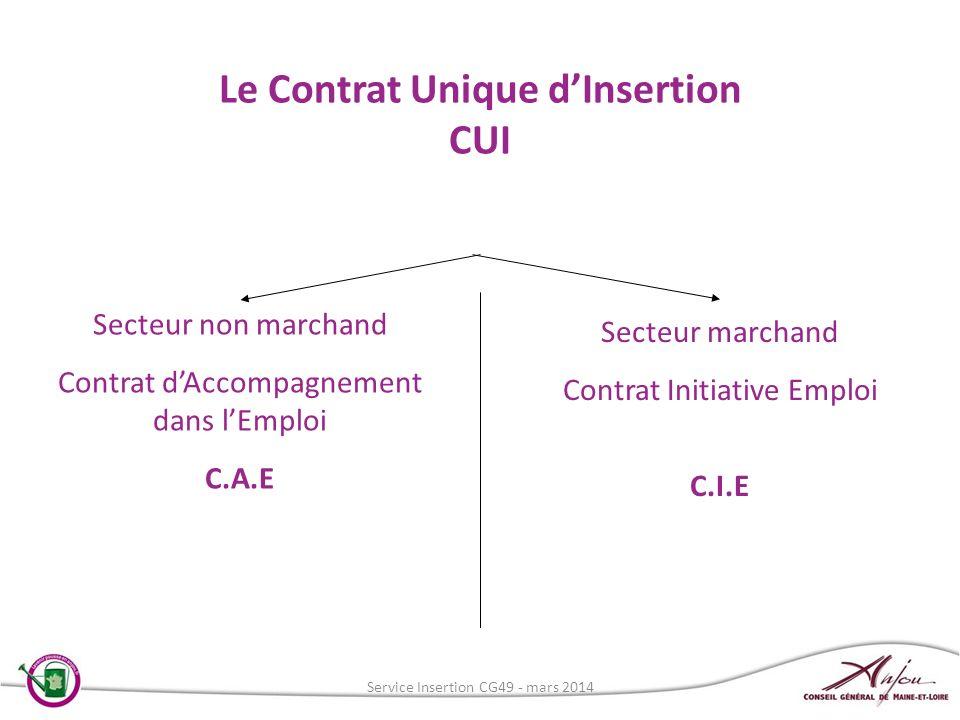 Le Contrat Unique dInsertion CUI Secteur non marchand Contrat dAccompagnement dans lEmploi C.A.E Secteur marchand Contrat Initiative Emploi C.I.E Serv