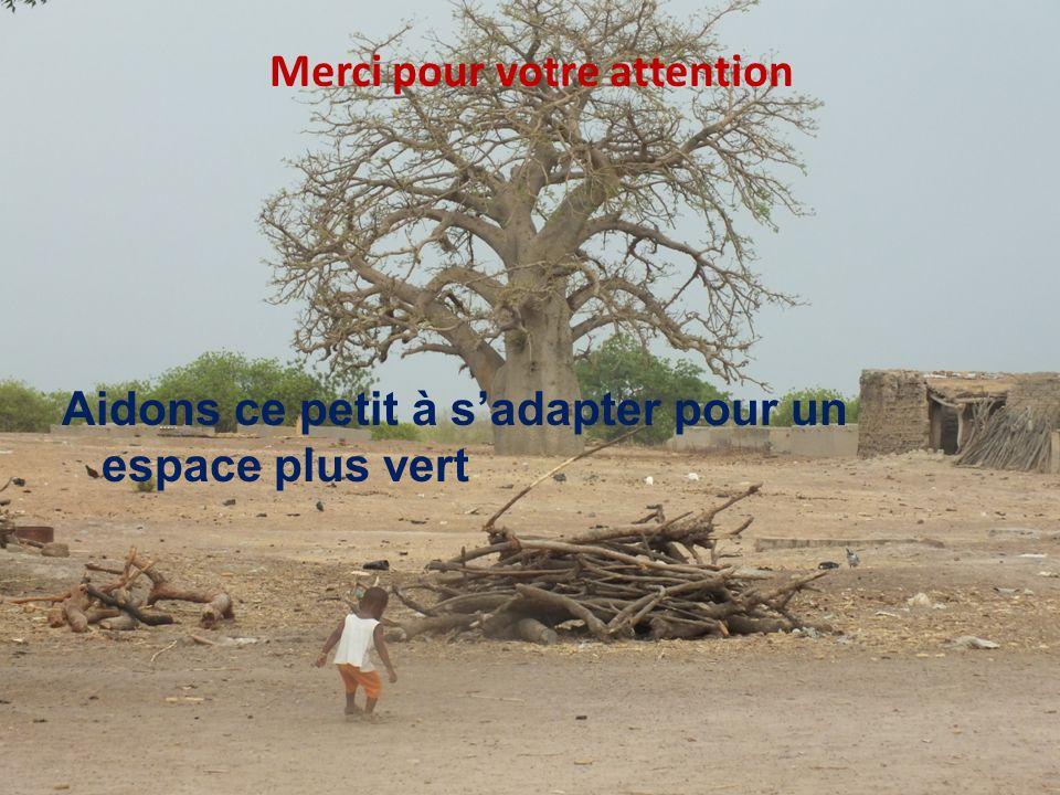 THINKING beyond the canopy Merci pour votre attention Aidons ce petit à sadapter pour un espace plus vert