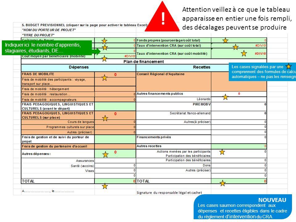 1 PLATEFORME AQUTIAINE CAP MOBILITE11 NOUVEAU Les cases saumon correspondent aux dépenses et recettes éligibles dans le cadre du règlement dinterventi