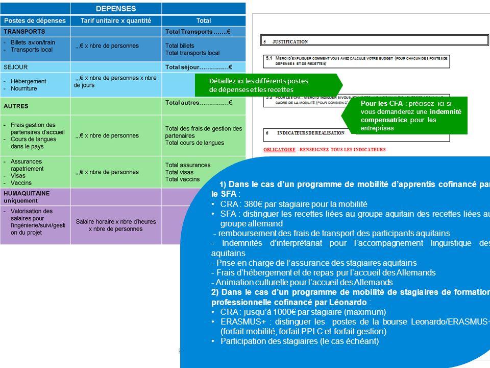 PLATEFORME AQUTIAINE CAP MOBILITE12 Détaillez ici les différents postes de dépenses et les recettes 1) Dans le cas dun programme de mobilité dapprenti