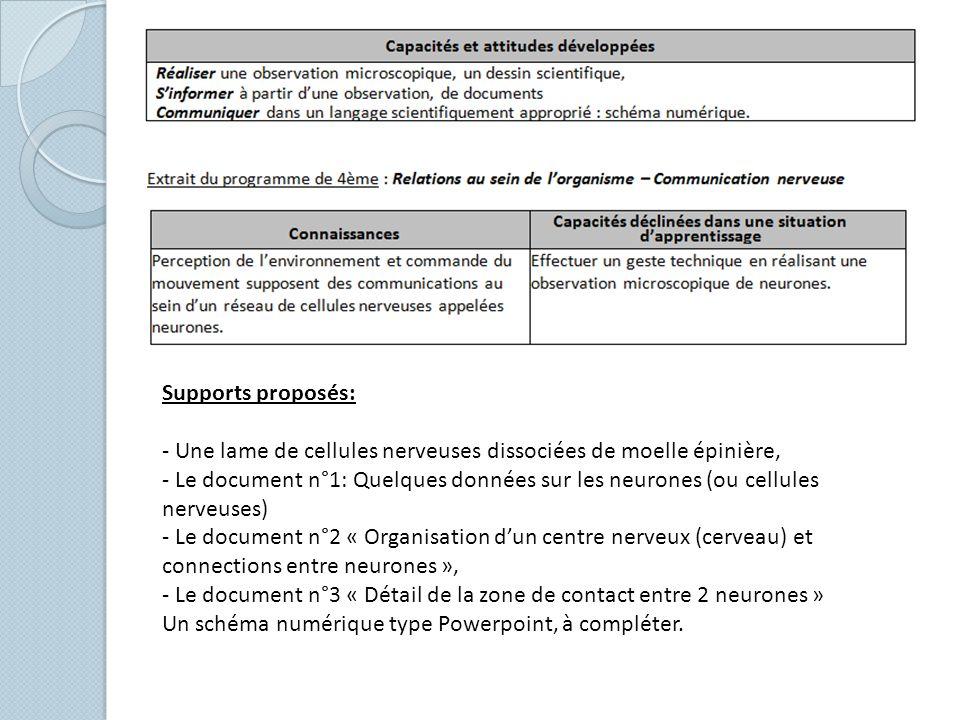 Supports proposés: - Une lame de cellules nerveuses dissociées de moelle épinière, - Le document n°1: Quelques données sur les neurones (ou cellules n