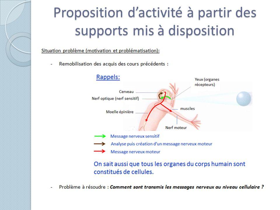 Proposition dactivité à partir des supports mis à disposition