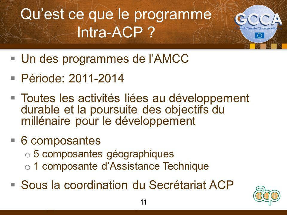 Quest ce que le programme Intra-ACP .