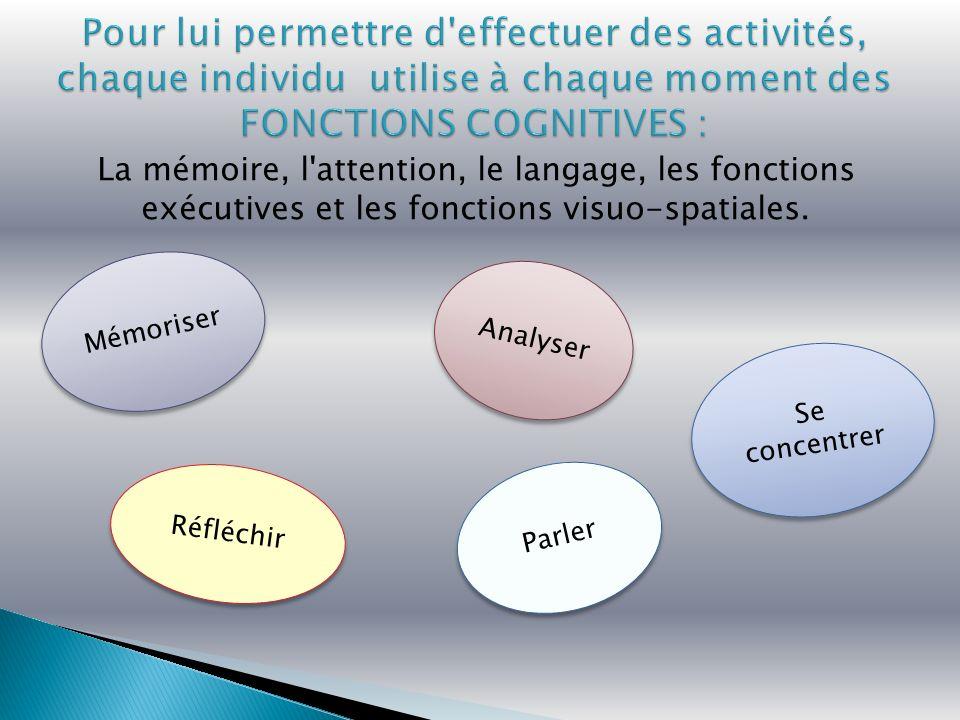 Parler Réfléchir Se concentrer Mémoriser Analyser La mémoire, l attention, le langage, les fonctions exécutives et les fonctions visuo-spatiales.
