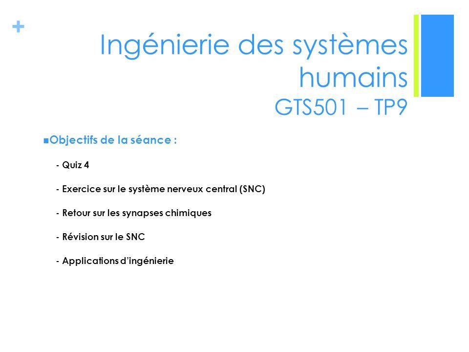 + Ingénierie des systèmes humains GTS501 – TP9 Objectifs de la séance : - Quiz 4 - Exercice sur le système nerveux central (SNC) - Retour sur les syna
