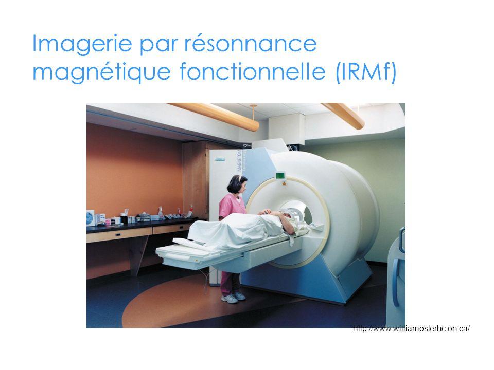 Imagerie par résonnance magnétique fonctionnelle (IRMf) http://www.williamoslerhc.on.ca/