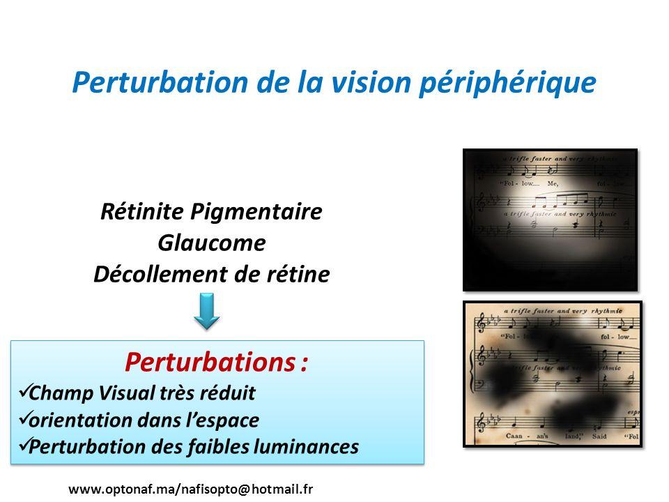 Perturbation de la vision périphérique Rétinite Pigmentaire Glaucome Décollement de rétine Perturbations : Champ Visual très réduit orientation dans l