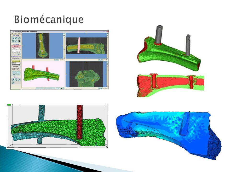 Documents & exercices sur http://lmafsrv1.epfl.ch/CoursEF2012http://lmafsrv1.epfl.ch/CoursEF2012 Méthode des éléments finis en mécanique des structures, Th.