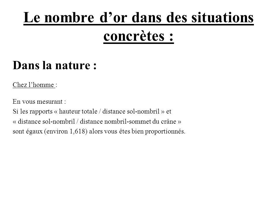 Le nombre dor dans des situations concrètes : Dans la nature : Chez lhomme : En vous mesurant : Si les rapports « hauteur totale / distance sol-nombri